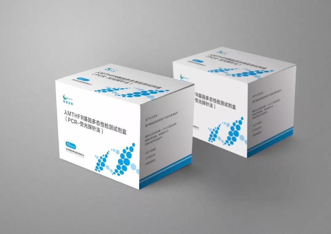 人MTHFR基因多态性检测试剂盒(PCR-荧光探针法)
