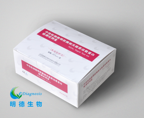 中性粒细胞明胶酶相关脂质运载蛋白(NGAL)检测试剂盒(免疫层析法)
